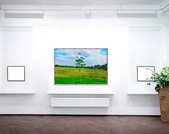 Lonely Tree Acrylic Print | Wall Art