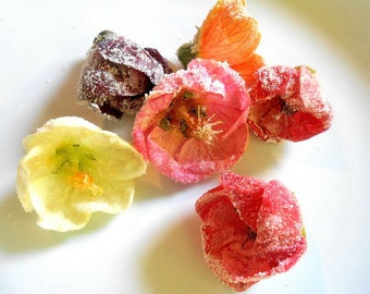 50 CANDIED HIBISCUS BLOSSOMS, Candied or uncandied. Edible  Flowers, Salads, Garnishes Hors d'oeuvre Toppers
