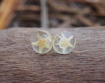 Starfish Earrings -Resin Earrings - Eco Resin Earrings - Beach Jewelry - Mermaid - Starfish