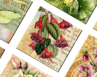 1 inch Square Images Digital Collage Sheet Vintage Flowers Scrapbooking Pendants Printable Original  Printable 4x6 inch sheet 250