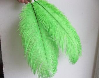 Ostrich feathers 30 / 35cm Green Apple 20pcs