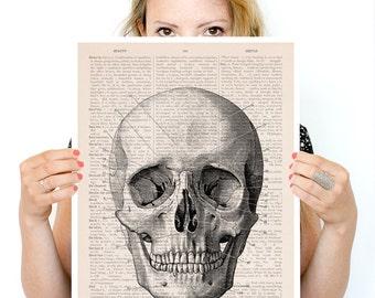 Human skull Poster, anatomical art,Anatomy wall art, Giclee art, Poster print, wall hanging doctor wall art, SKA011PA3