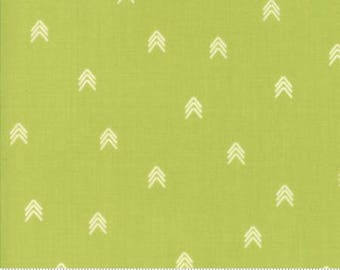 INSTOCK Creekside Compass  Pistachio 37536 19 by Sherri and Chelsi from Moda -1 yard