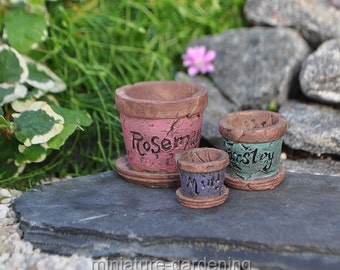 Herb Pots for Miniature Garden, Fairy Garden