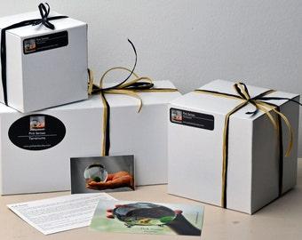 Boîte cadeau / / emballage cadeau