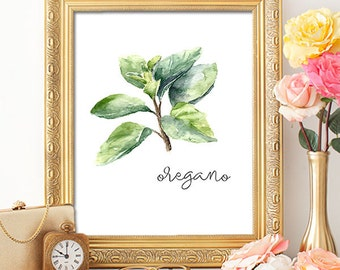 Herbs Oregano - 8x10 - Printable Art, Dorm Decor, Wall Art, Kitchen Art, Home Decor, Herb Art, Herb Prints, Herb Wall Art
