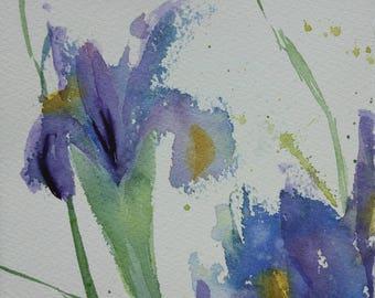 Irises 2 watercolor painting original
