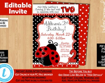 Ladybug invite 2nd Birthday invitation Girl second birthday invitation 2 years lady bug invitation ladybug party ladybug birthday party girl