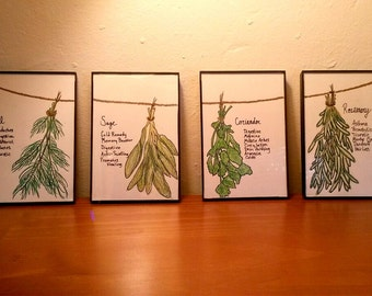 Framed Drawing Hanging Herbs Medicinal Uses- Kitchen Decor - Functional Framed Art - Herbs Hanging From Twine Drawing