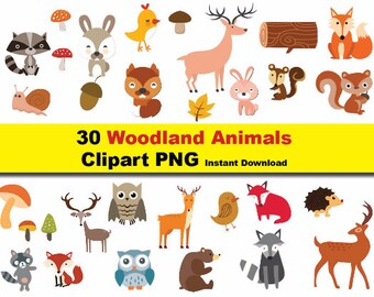 INSTANT DL- 30x woodland animals Clipart - printable Digital Clipart Graphic Instant Download