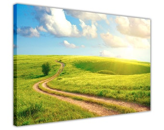 "Sunshine Over Green Field Canvas Pictures Wall Art Framed Prints Home Decoration Photos Modern Artwork Poster Size: 30"" X 20"" (76CM X 50CM)"