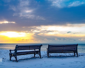 Worthing beachside benches in the snow Photo / Poster / Canvas Colour