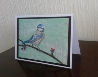 Bluetit Greetings Card A5