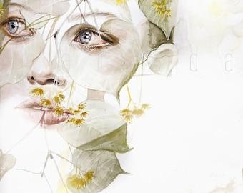 LINDEN - watercolor art print