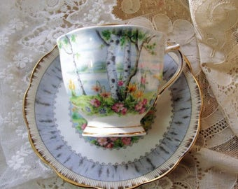 CHARMING Vintage Tea Cup and Saucer SILVER BIRCH Royal Albert English Bone China Bridal Luncheons Showers,Hostess Gift,Weddings,Tea Parties