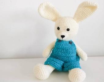 Boy Bunny Crochet Amigurumi
