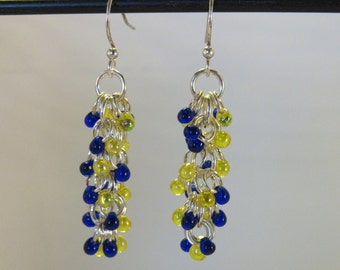 Michigan/Michigan State Earrings