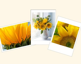 Sunflower Card Set, Photo Cards, Gift for Gardener, Three Flower Greeting Cards, Blank Cards,Floral Note Card Set