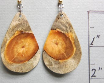 Unique Glowing Pine Exotic Wood Earrings Handmade hypoallergenic wires  ExoticwoodJewelryAnd
