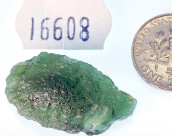 16608 Moldavite from Bohemia, Czech Republic 4.5 g