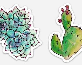 Watercolor Cactus Succulent Sticker Set