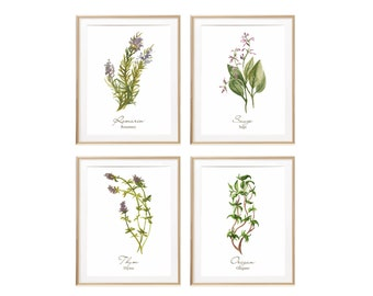 Watercolor Herb Prints, Botanical Print, French Kitchen Wall Decor, Cooking Gift For New Kitchen, Herb Wall Art, Dining Room Art