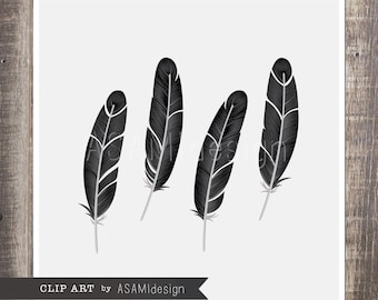 Black Crow Feather Clipart - PNG