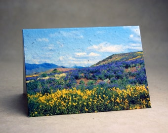 Winthrop Seed Paper Wildflower Print Recycled Cotton Blank Notecard Set - Northwest Photography