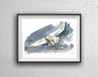 Watercolor Owl watercolor painting art print