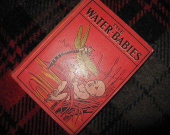 Vintage The Water-Babies, Charles Kingsley, Published by David McKay Company, 4 Colorplates, Antique Chidren's book