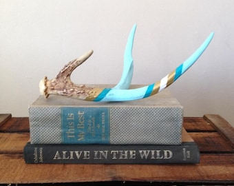 Painted Antler Art Blue And Gold
