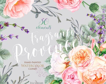 lavender, Roses Flowers Watercolor, Floral elements, Botanical art, Provence, Boho, Hand Painted Wedding Clipart. Digital greeting card png