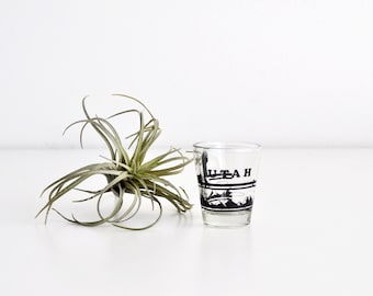 Vintage Utah Shot Glass