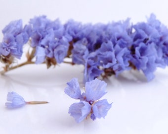 1 packet of real flowers, dried sea Lavender Lavender color for fill globes, vials and glass beads