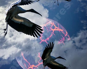 Woodstork leaving Earth. Dramatic, otherworldly.