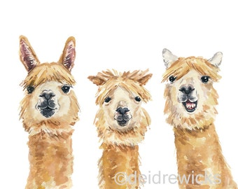 Llama Watercolor Painting PRINT, Funny Animal Illustration, Nursery Art, Home Decor