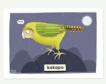 Kakapo print - parrot print - kakapo illustration - quirky art print - bird lover gift