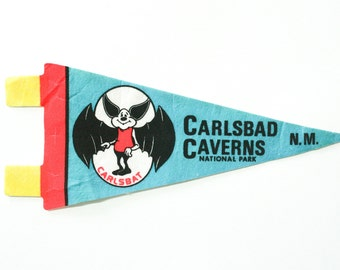 vintage 60s Carlsbad Caverns National Park New Mexico felt souvenir pennant / travel pennant / bunting banner / small gift