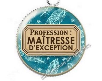 Pendant cabochon resin profession: teacher p46