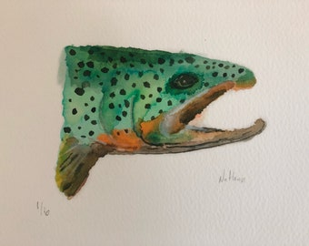 Rainbow Trout II - prints