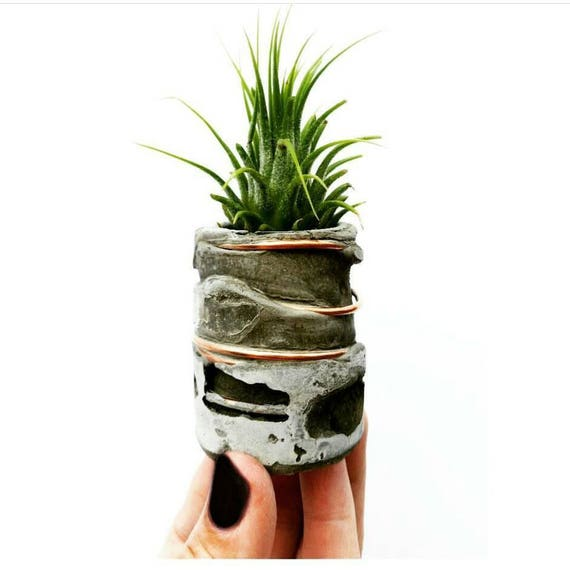 Concrete Air Planter/Modern Planter/Small Air Planter/Office Planter/Succulent Planter/ Indoor Planter/Desk planter/Dorm decor/Minimalist
