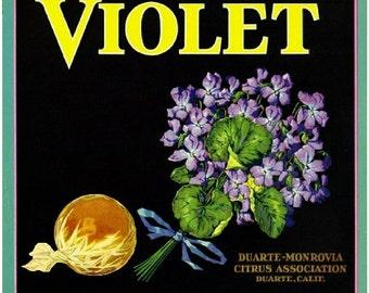 Duarte- Violet Orange Citrus Fruit Crate Box Label Art Print
