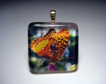 Butterfly Of Freedom  Glass Tile Pendant