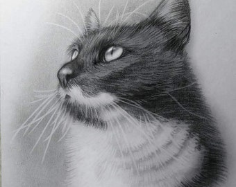 Morhers Day Gift. Custom Print Cat Portrait-Cat Portrait-Custom Made-Personalised Gift- pet portrait-Illustration-Gift-Memorial. Dog pot