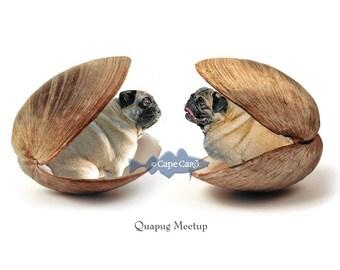 Quapug Meetup