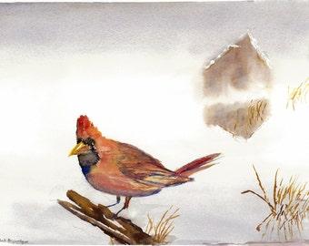 Red bird original watercolor painting print of a cardinal