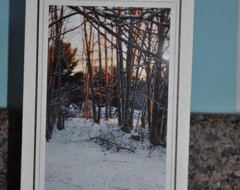 Double Framed Card - Maine Winter Woods