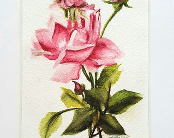 Watercolor Pink Rose Bouquet