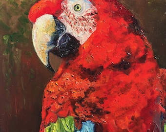 Macaw Oil Painting