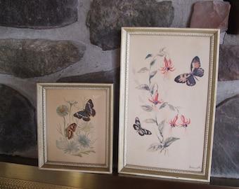 Lambert Butterflies and Blooms in Frames